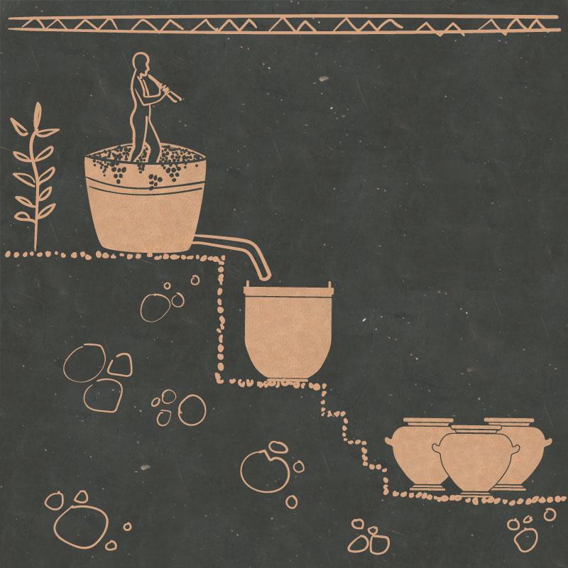 Risultati immagini per vino etrusco